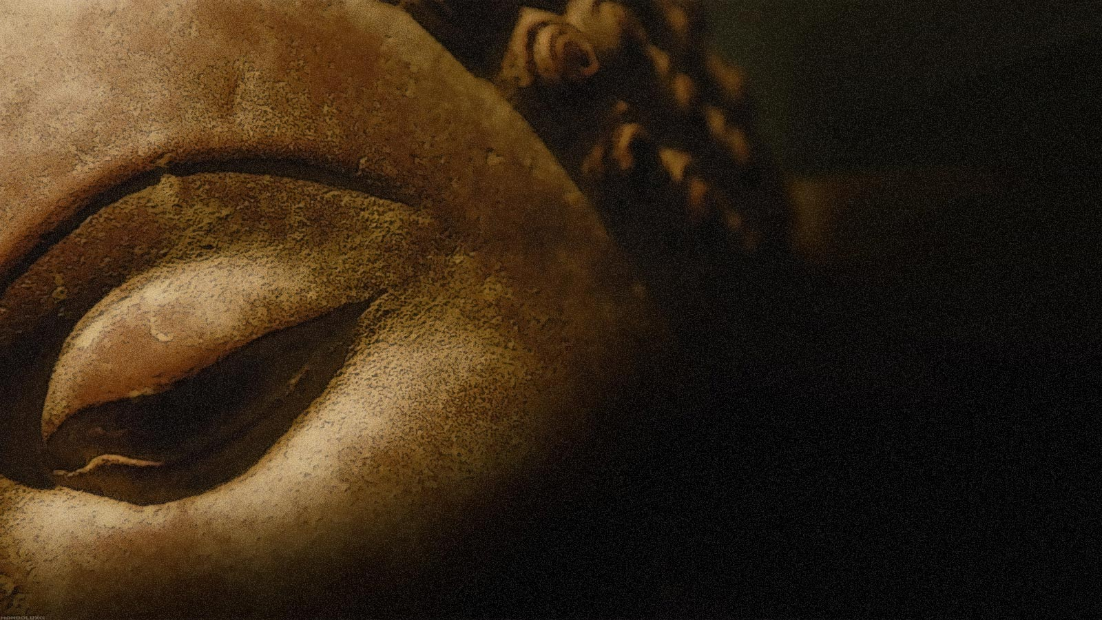 nietzsches meditation on buddhism essay Buddhism and hinduism essays: both believe in certain spiritual practices like meditation and buddhism both have numerous gods and both follow.